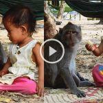 குழந்தையுடன் கொஞ்சி விளையாடும் குரங்கு - வைரலாகும் வீடியோ 27